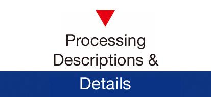 Processing Details
